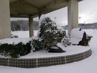 170117 雪の野間中
